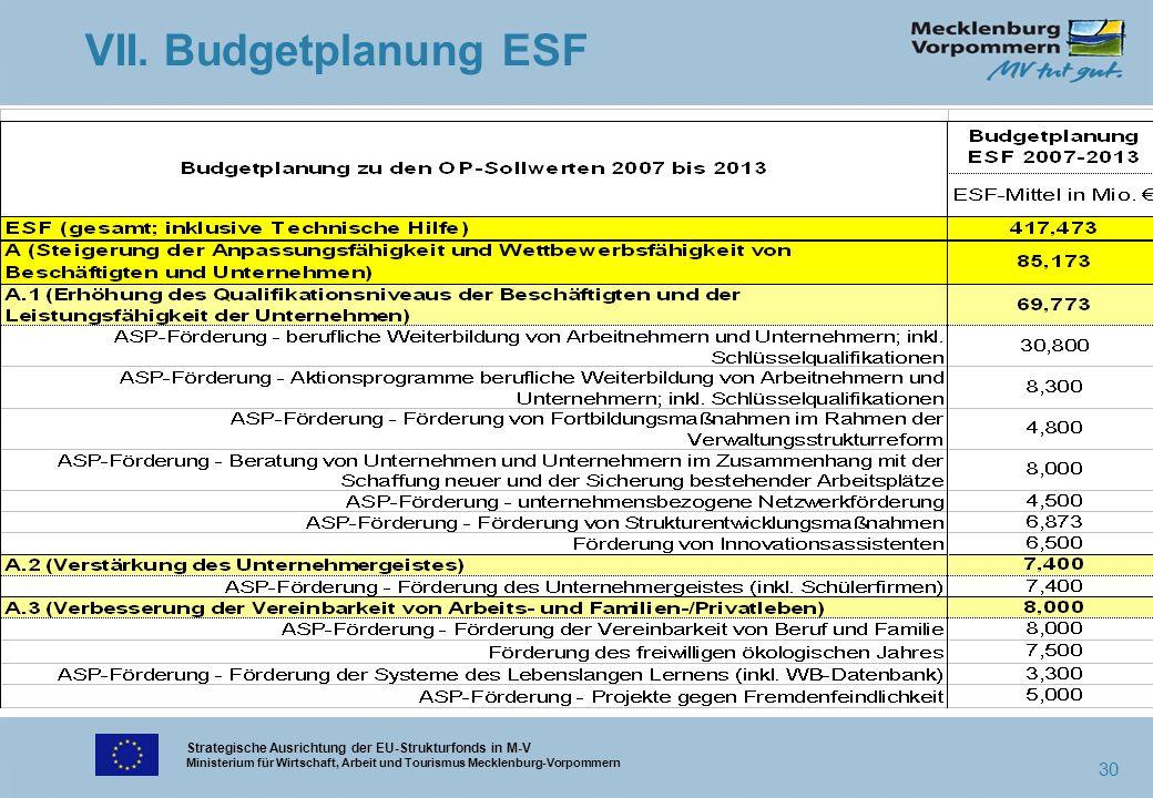 Strategische Ausrichtung der EU-Strukturfonds in M-V Ministerium für Wirtschaft, Arbeit und Tourismus Mecklenburg-Vorpommern 30 VII. Budgetplanung ESF