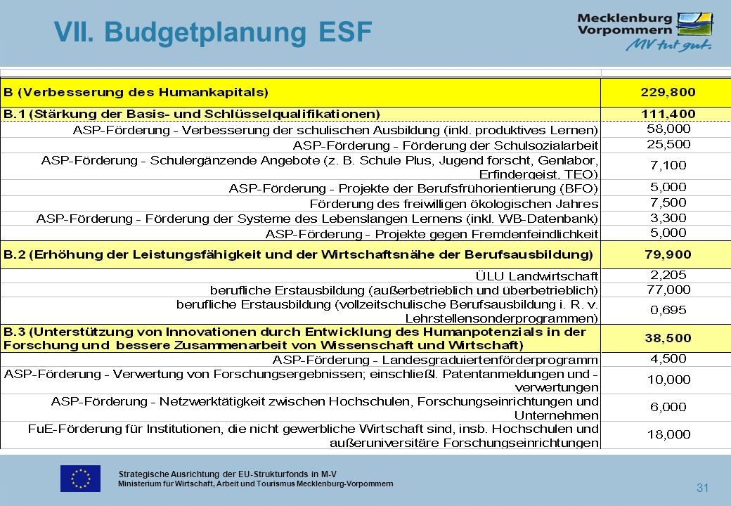 Strategische Ausrichtung der EU-Strukturfonds in M-V Ministerium für Wirtschaft, Arbeit und Tourismus Mecklenburg-Vorpommern 31 VII. Budgetplanung ESF