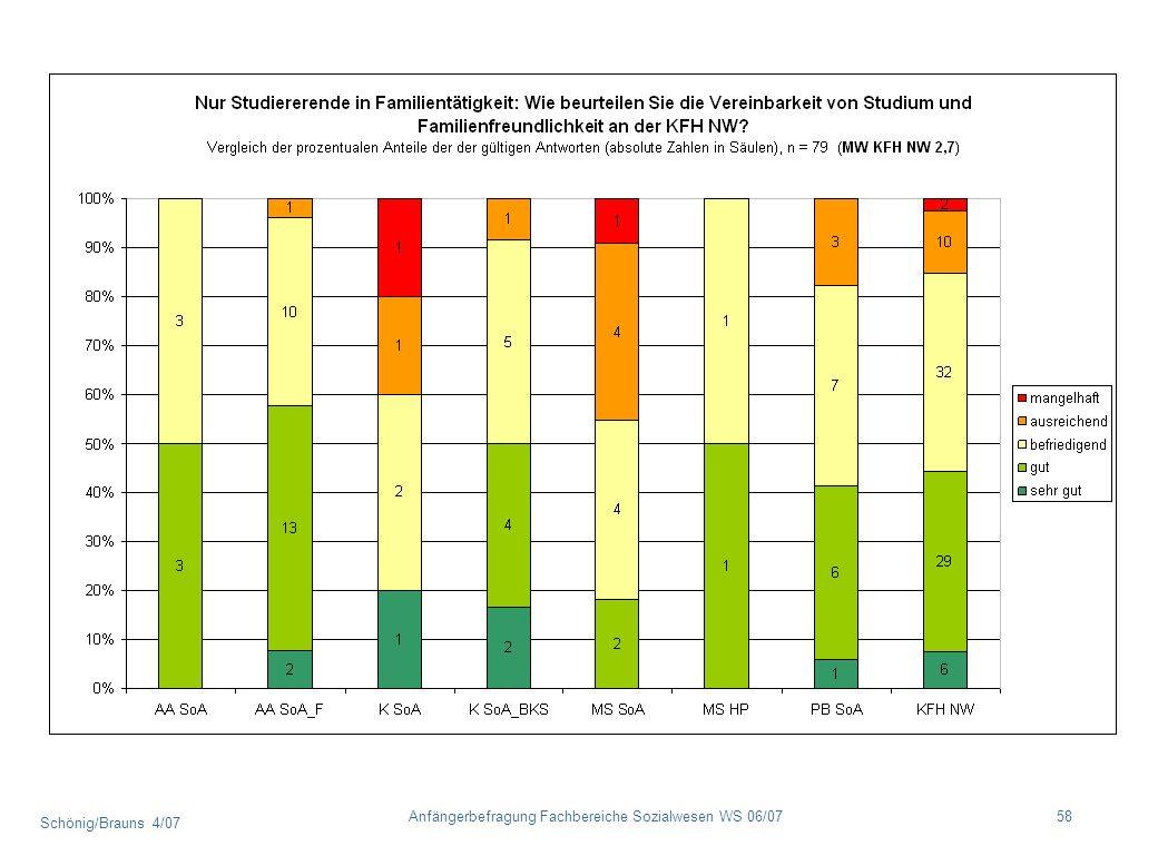 Schönig/Brauns 4/07 58Anfängerbefragung Fachbereiche Sozialwesen WS 06/07