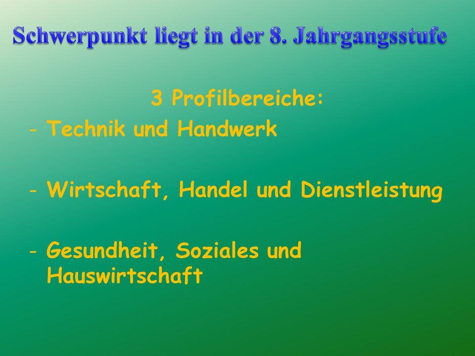 3 Profilbereiche: -Technik und Handwerk -Wirtschaft, Handel und Dienstleistung -Gesundheit, Soziales und Hauswirtschaft