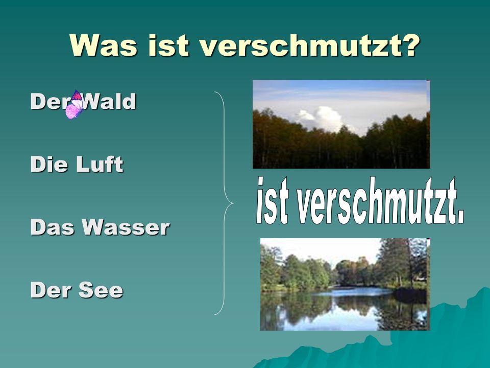 Was ist verschmutzt? Der Wald Die Luft Das Wasser Der See