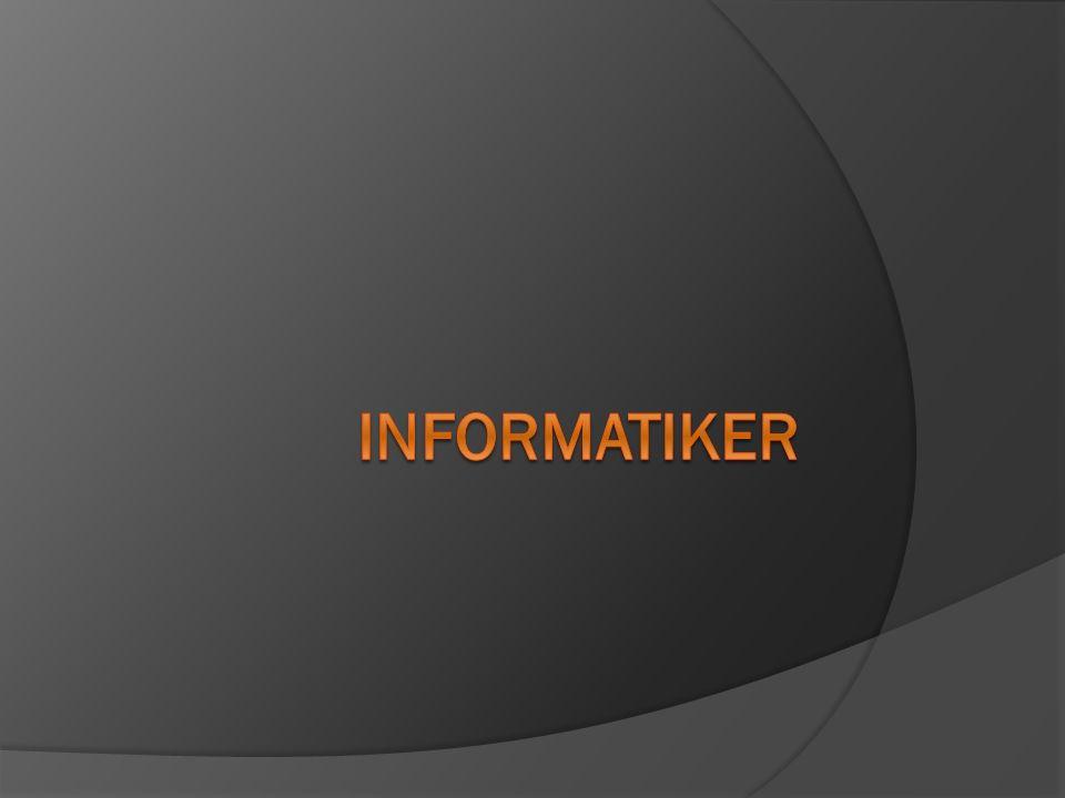 Applikationsentwickler Systemtechnik Support Informatiker
