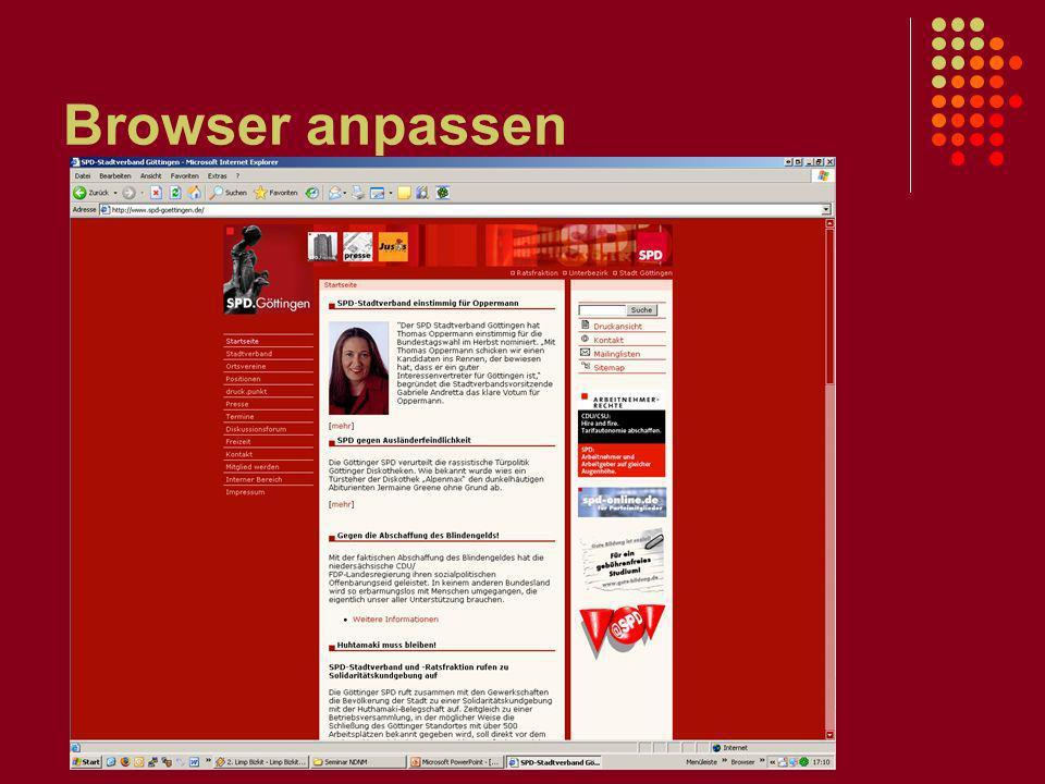 Browser anpassen