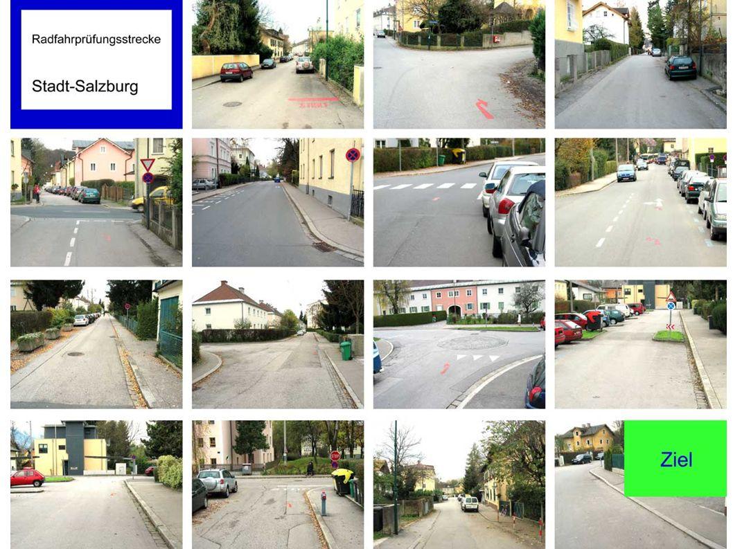 Pfeile deuten geradeaus + Ein kurzer Blick nach links und rechts in die Tegetthoffstraße und gerade weiterfahren (Rechtsregel gilt ).