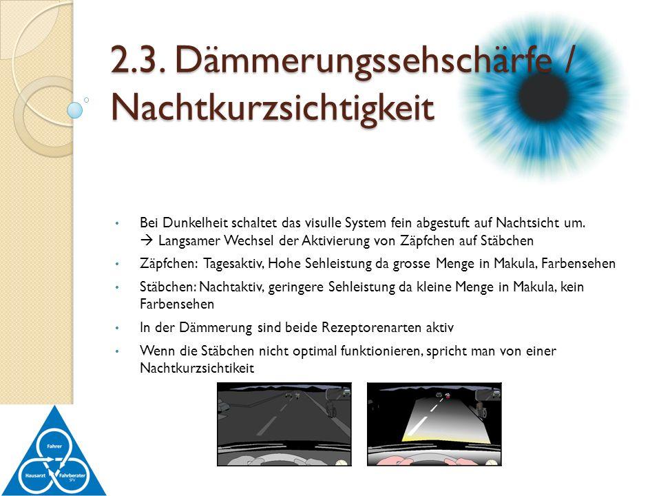 Bei Dunkelheit schaltet das visulle System fein abgestuft auf Nachtsicht um. Langsamer Wechsel der Aktivierung von Zäpfchen auf Stäbchen Zäpfchen: Tag