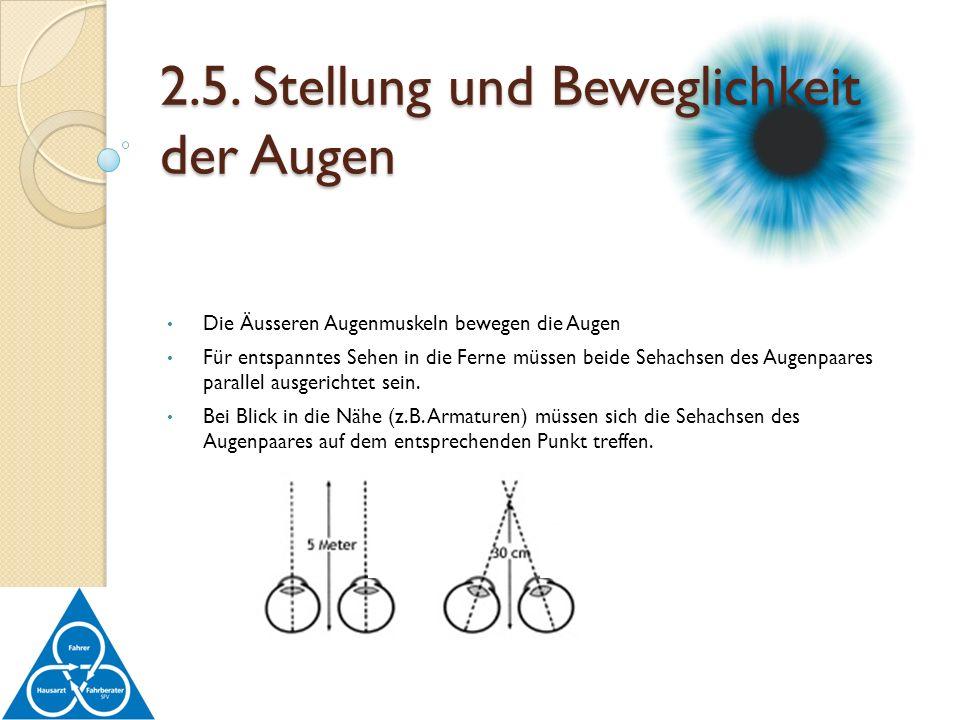 Die Äusseren Augenmuskeln bewegen die Augen Für entspanntes Sehen in die Ferne müssen beide Sehachsen des Augenpaares parallel ausgerichtet sein. Bei
