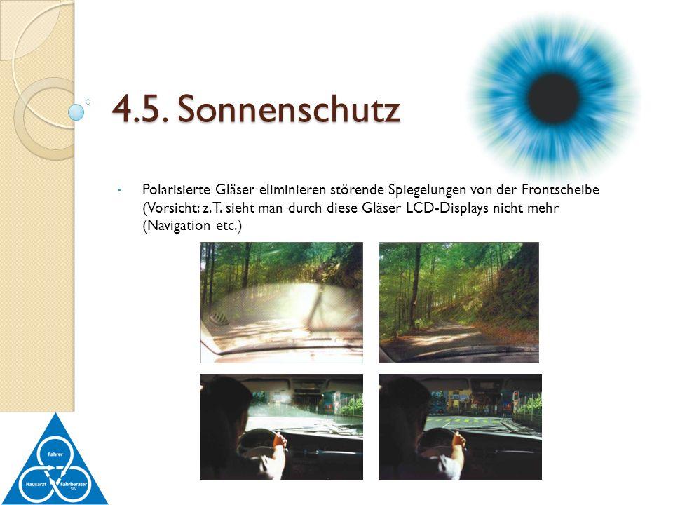 Polarisierte Gläser eliminieren störende Spiegelungen von der Frontscheibe (Vorsicht: z.T. sieht man durch diese Gläser LCD-Displays nicht mehr (Navig