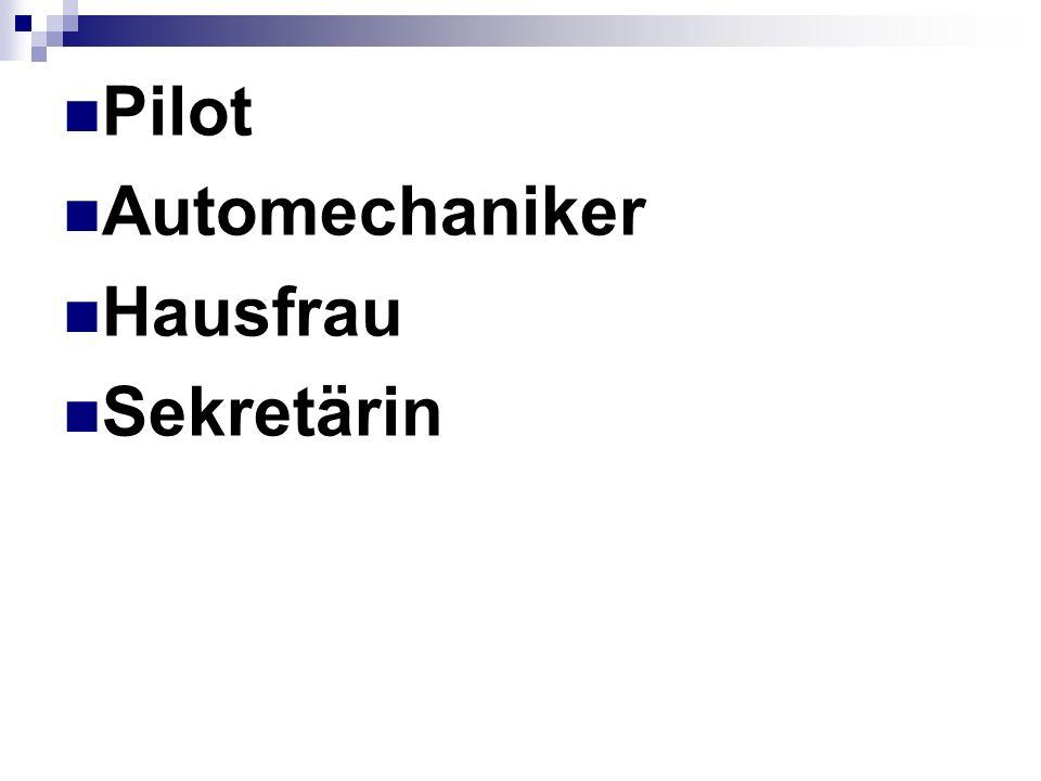 Pilot Automechaniker Hausfrau Sekretärin