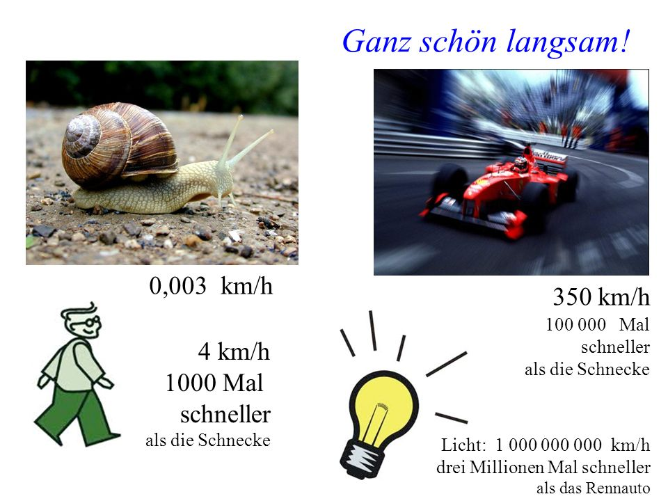Manfred Jeitler, Institut für Hochenergiephysik Wer ist am schnellsten? 17 Ganz schön langsam! 0,003 km/h 350 km/h 4 km/h 1000 Mal schneller als die S