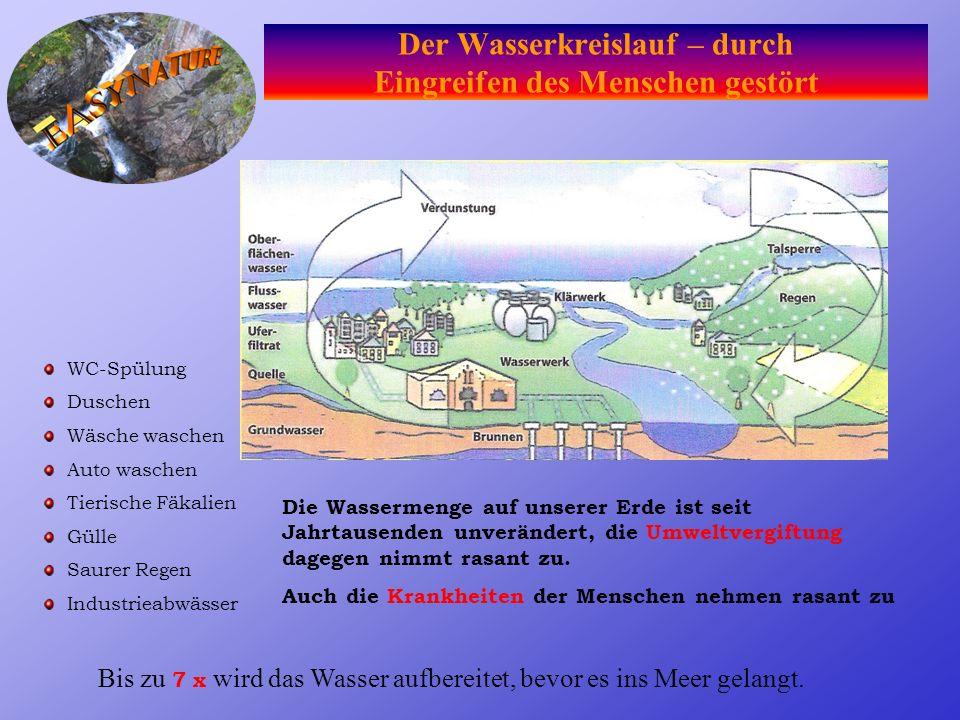 Wasser ist auf unserem Planeten nur in einer begrenzten Menge vorhanden und nicht vermehrbar. 2,14 %Eis (Polkappen und Gletscher) 0,65 %Süßwasser (Flü