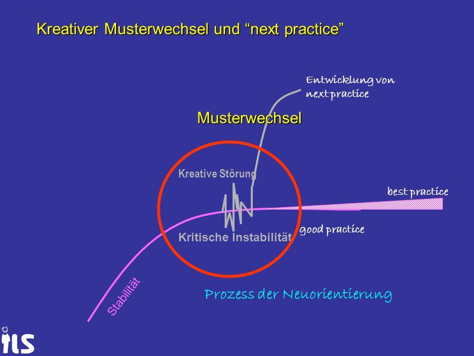 Stabilität good practice best practice Kritische Instabilität Kreative Störung Prozess der Neuorientierung Entwicklung von next practice Musterwechsel