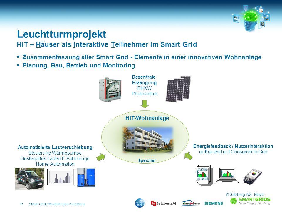 15Smart Grids Modellregion Salzburg Leuchtturmprojekt HiT – Häuser als interaktive Teilnehmer im Smart Grid Zusammenfassung aller Smart Grid - Element