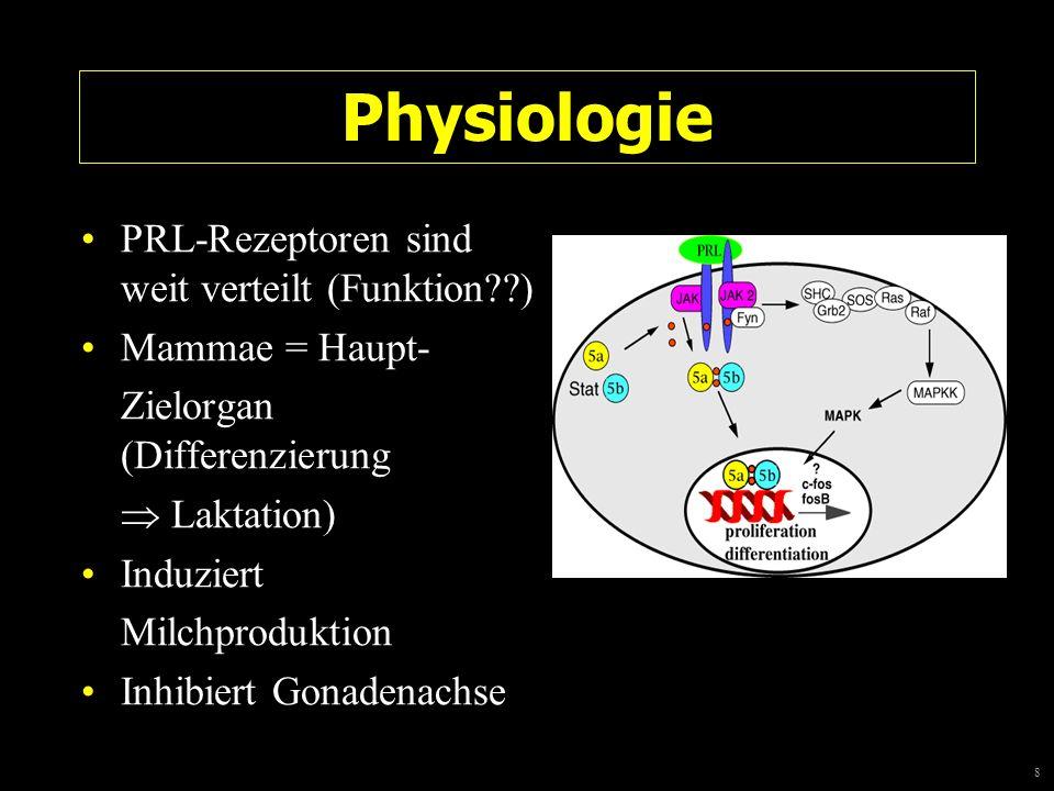8 Physiologie PRL-Rezeptoren sind weit verteilt (Funktion??) Mammae = Haupt- Zielorgan (Differenzierung Laktation) Induziert Milchproduktion Inhibiert