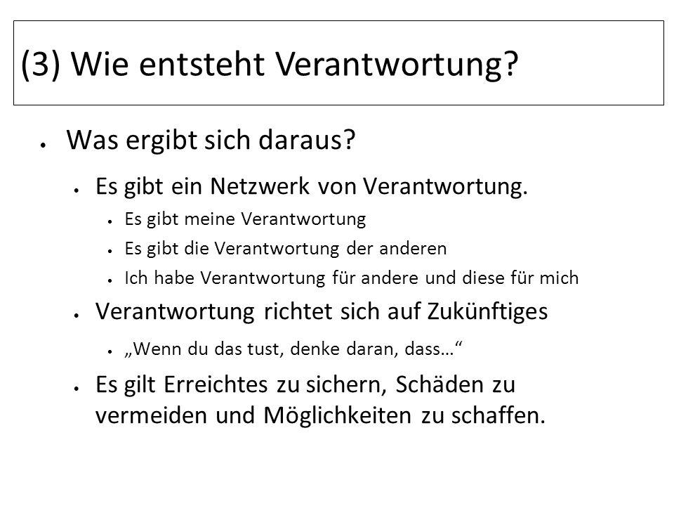 (3) Wie entsteht Verantwortung? Was ergibt sich daraus? Es gibt ein Netzwerk von Verantwortung. Es gibt meine Verantwortung Es gibt die Verantwortung
