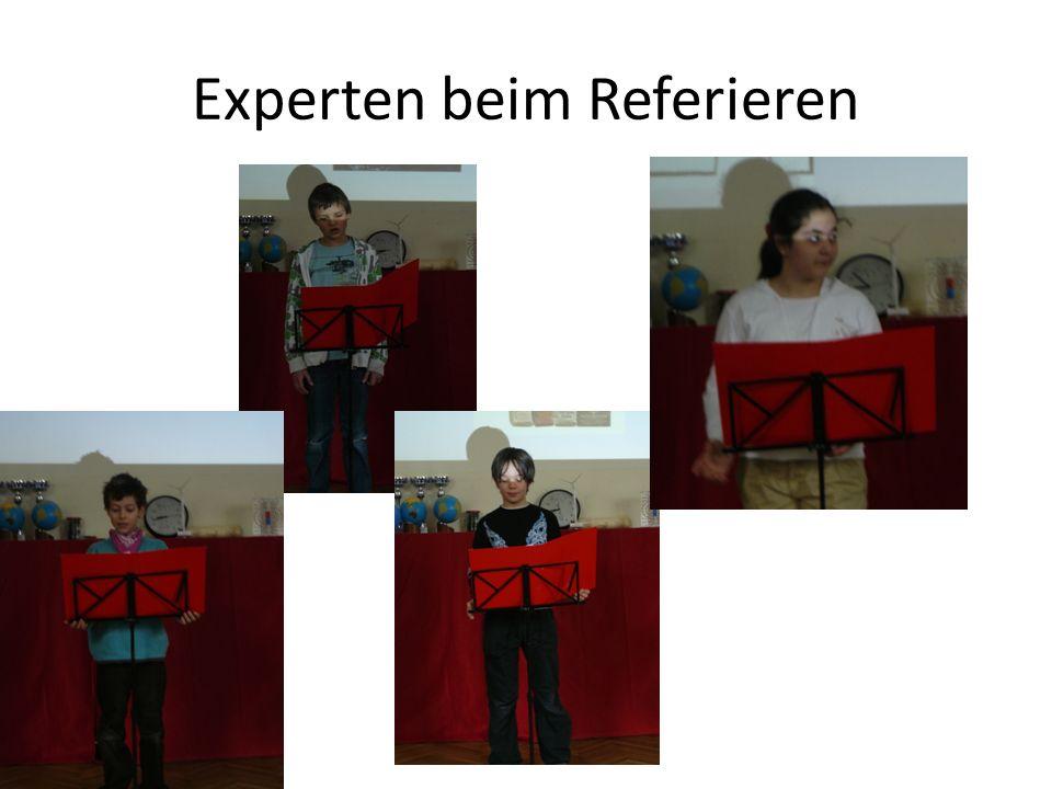 Experten beim Referieren