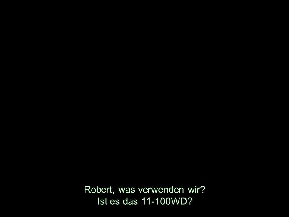 Robert, was verwenden wir? Ist es das 11-100WD?