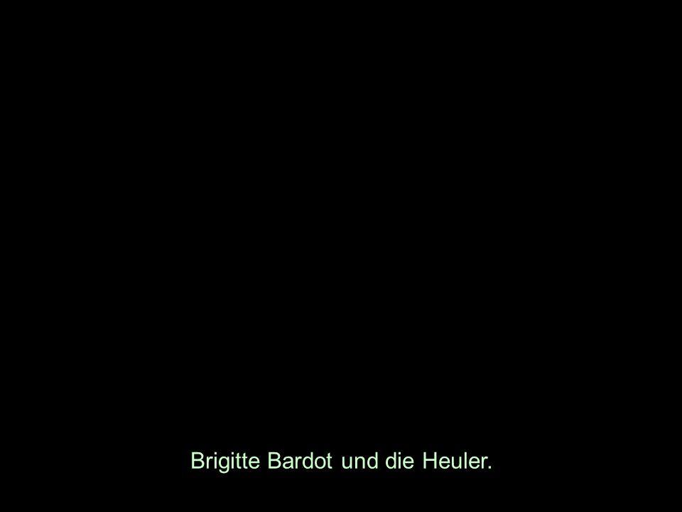 Brigitte Bardot und die Heuler.