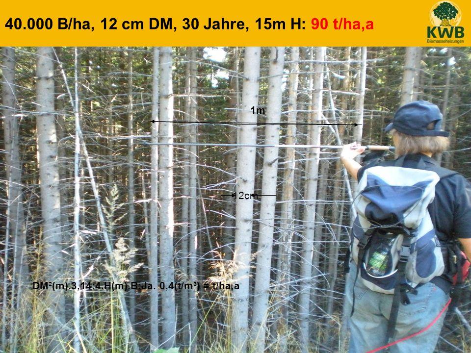22 40.000 B/ha, 12 cm DM, 30 Jahre, 15m H: 90 t/ha,a 1m DM²(m).3,14:4.H(m).B:Ja. 0,4(t/m³) = t/ha,a 12cm