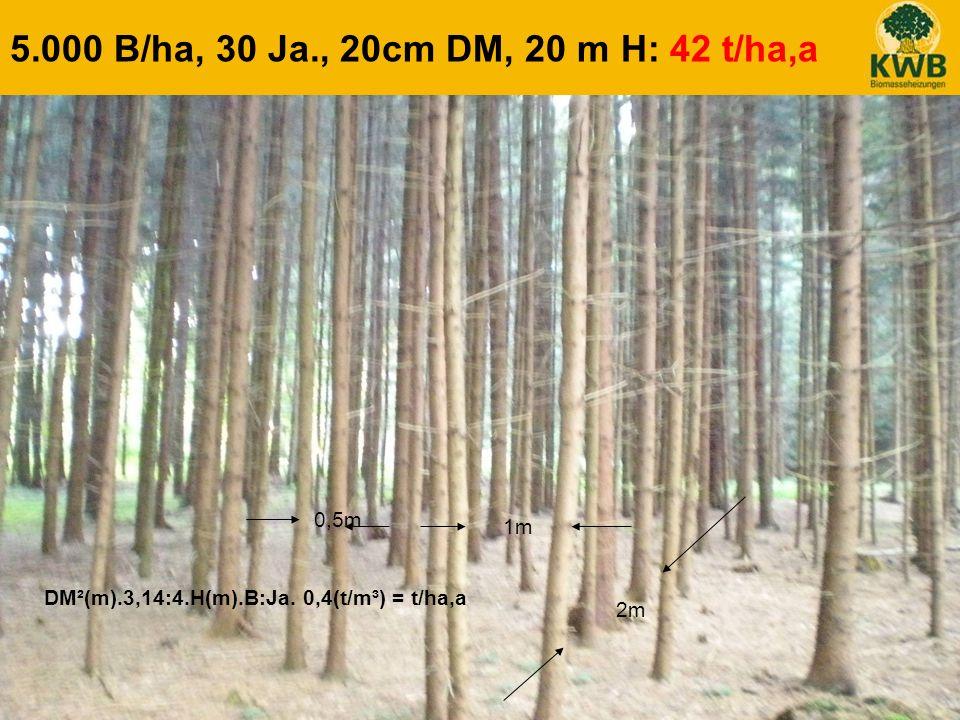 23 5.000 B/ha, 30 Ja., 20cm DM, 20 m H: 42 t/ha,a DM²(m).3,14:4.H(m).B:Ja. 0,4(t/m³) = t/ha,a 0,5m 1m 2m