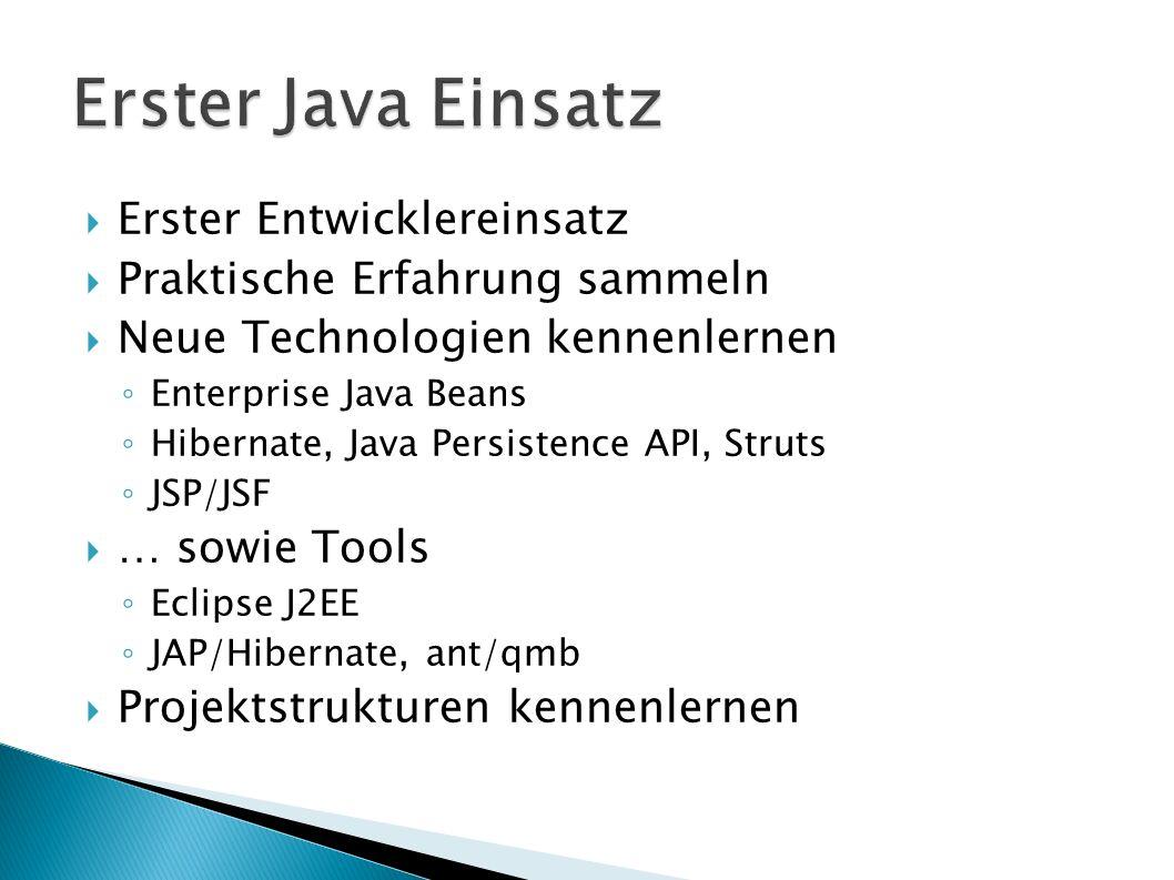 Erster Entwicklereinsatz Praktische Erfahrung sammeln Neue Technologien kennenlernen Enterprise Java Beans Hibernate, Java Persistence API, Struts JSP/JSF … sowie Tools Eclipse J2EE JAP/Hibernate, ant/qmb Projektstrukturen kennenlernen