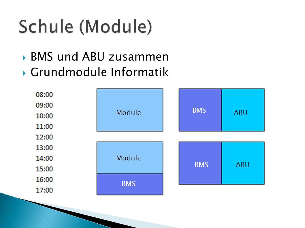 BMS und ABU zusammen Grundmodule Informatik Module BMS ABU
