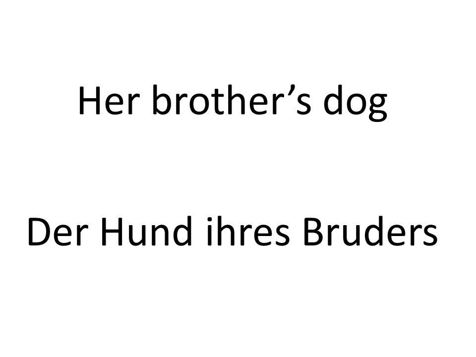 Her brothers dog Der Hund ihres Bruders
