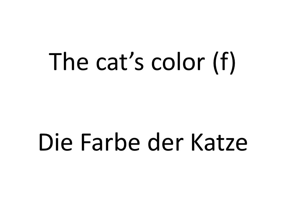 The cats color (f) Die Farbe der Katze