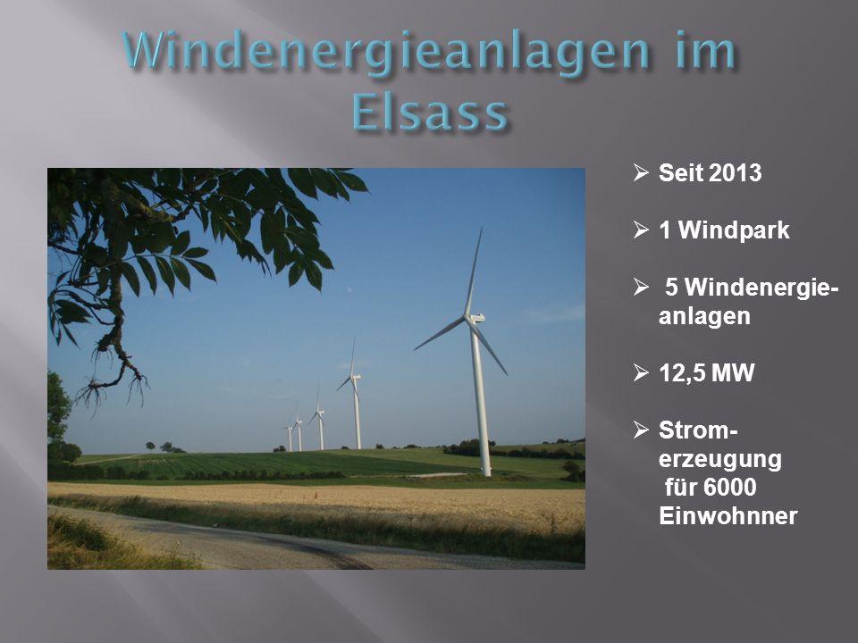Seit 2013 1 Windpark 5 Windenergie- anlagen 12,5 MW Strom- erzeugung für 6000 Einwohnner
