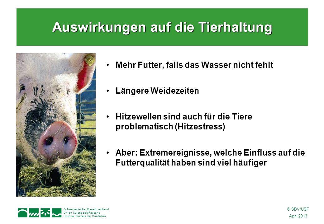 Schweizerischer Bauernverband Union Suisse des Paysans Unione Svizzera dei Contadini © SBV/USP April 2013 Mehr Futter, falls das Wasser nicht fehlt Längere Weidezeiten Hitzewellen sind auch für die Tiere problematisch (Hitzestress) Aber: Extremereignisse, welche Einfluss auf die Futterqualität haben sind viel häufiger Auswirkungen auf die Tierhaltung