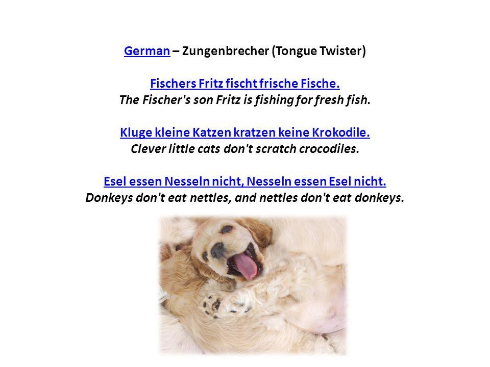 GermanGerman – Zungenbrecher (Tongue Twister) Fischers Fritz fischt frische Fische. The Fischer's son Fritz is fishing for fresh fish. Kluge kleine Ka
