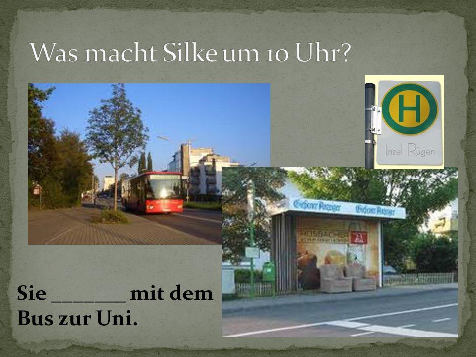 Sie _______ mit dem Bus zur Uni.