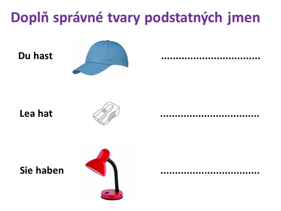 Du hast.................................. Lea hat..................................