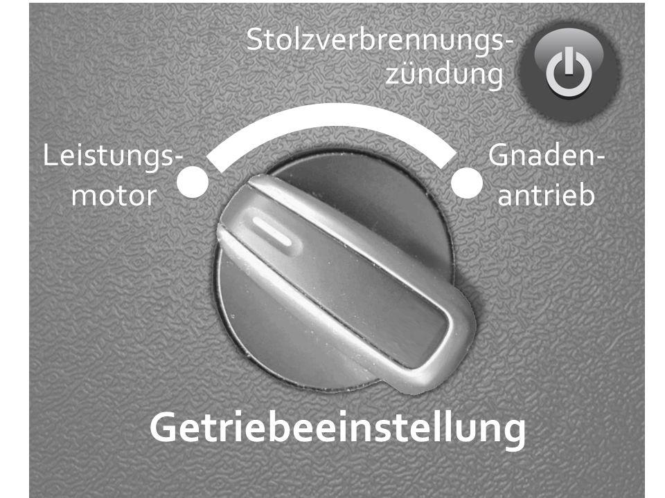 Gnaden- antrieb Leistungs- motor Getriebeeinstellung Stolzverbrennungs- zündung