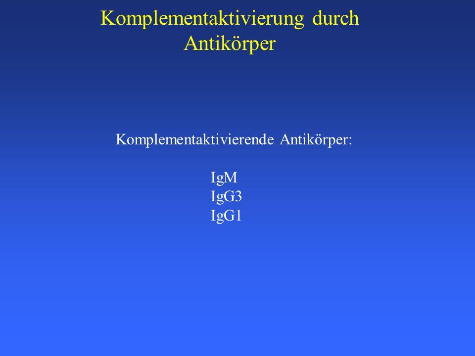 Komplementaktivierung durch Antikörper Komplementaktivierende Antikörper: IgM IgG3 IgG1