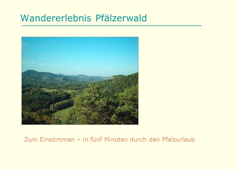 Wandererlebnis Pfälzerwald Zum Einstimmen – in fünf Minuten durch den Pfalzurlaub