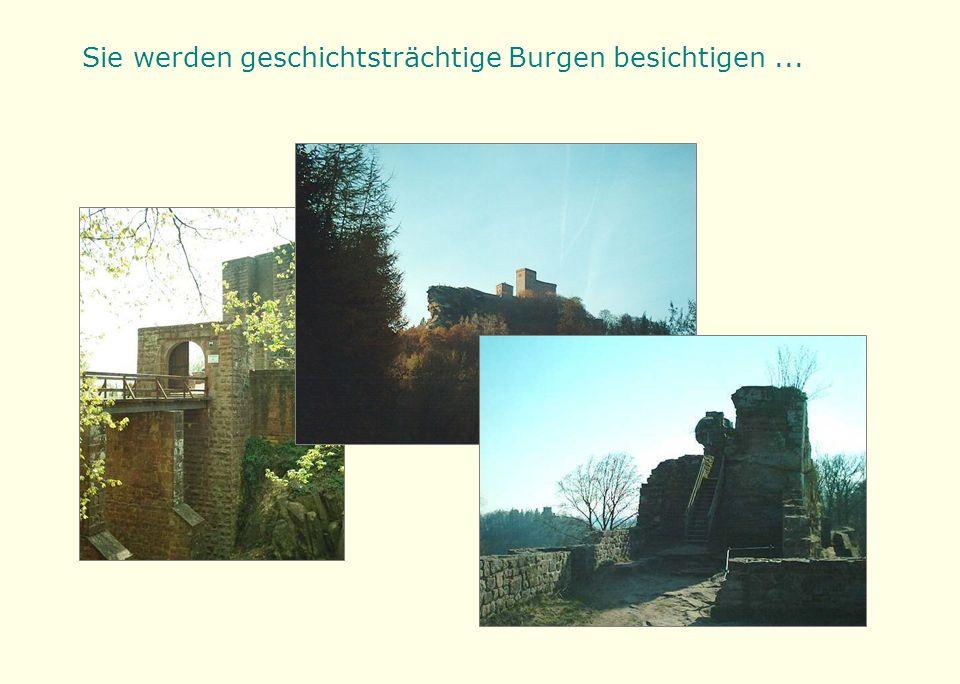 Sie werden geschichtsträchtige Burgen besichtigen...