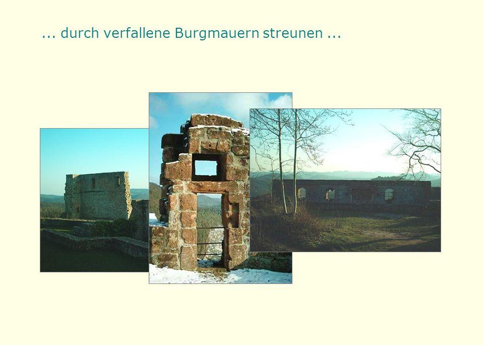 ... durch verfallene Burgmauern streunen...