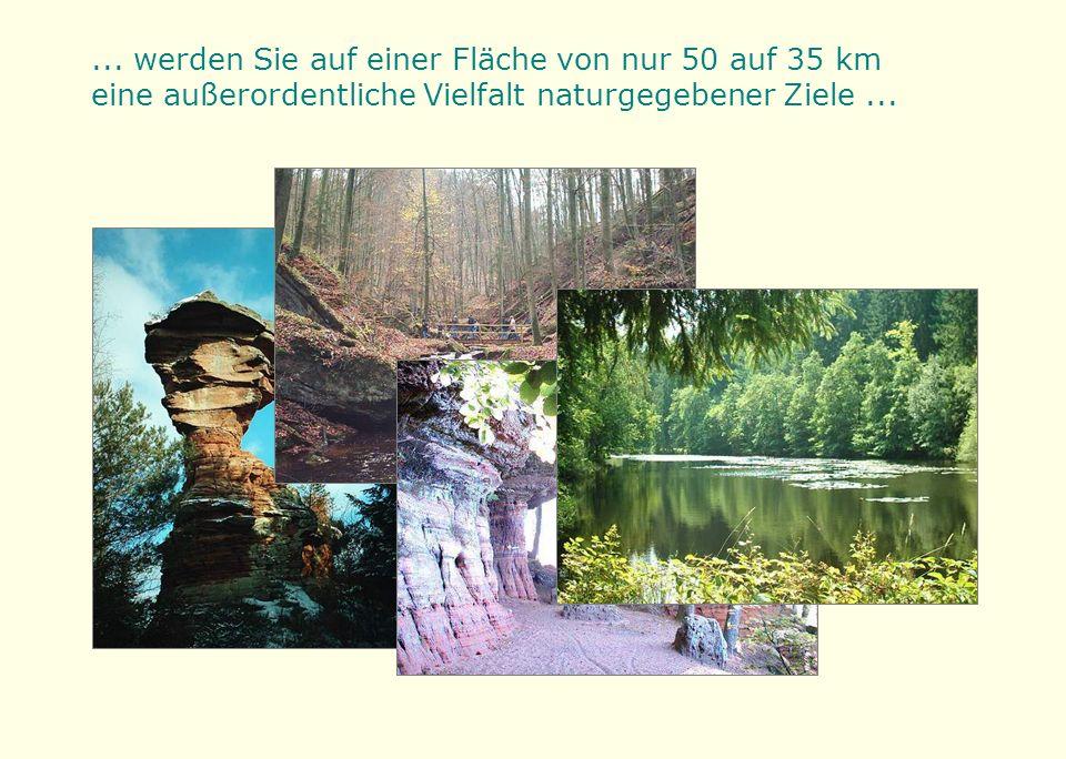 ... werden Sie auf einer Fläche von nur 50 auf 35 km eine außerordentliche Vielfalt naturgegebener Ziele...