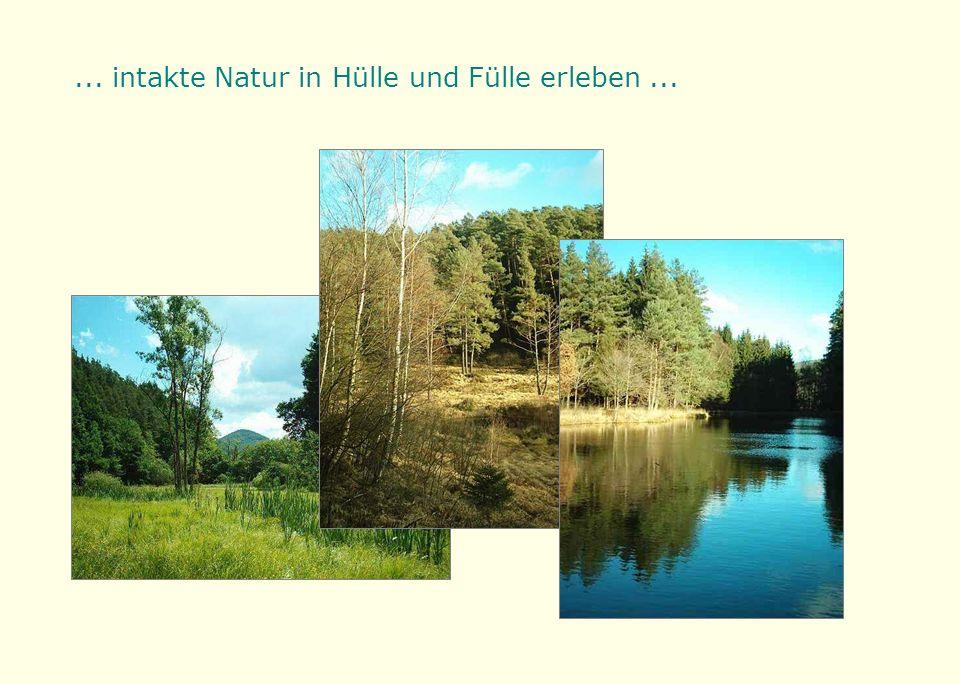 ... intakte Natur in Hülle und Fülle erleben...
