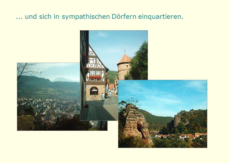 Sie werden den Farben- und Formenreichtum der pfälzischen Buntsandsteinfelsen bestaunen...