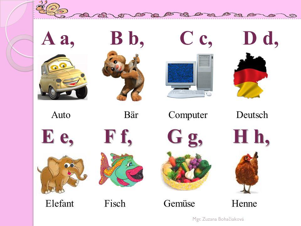 I i, J j, K k, L l, M m, N n, O o, P p, I i, J j, K k, L l, Igel Junge Katze Löwe M m, N n, O o, P p, Mgr.