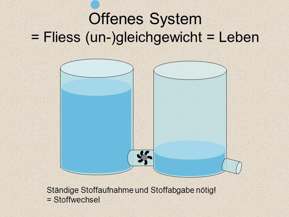 Offenes System = Fliess (un-)gleichgewicht = Leben Ständige Stoffaufnahme und Stoffabgabe nötig! = Stoffwechsel