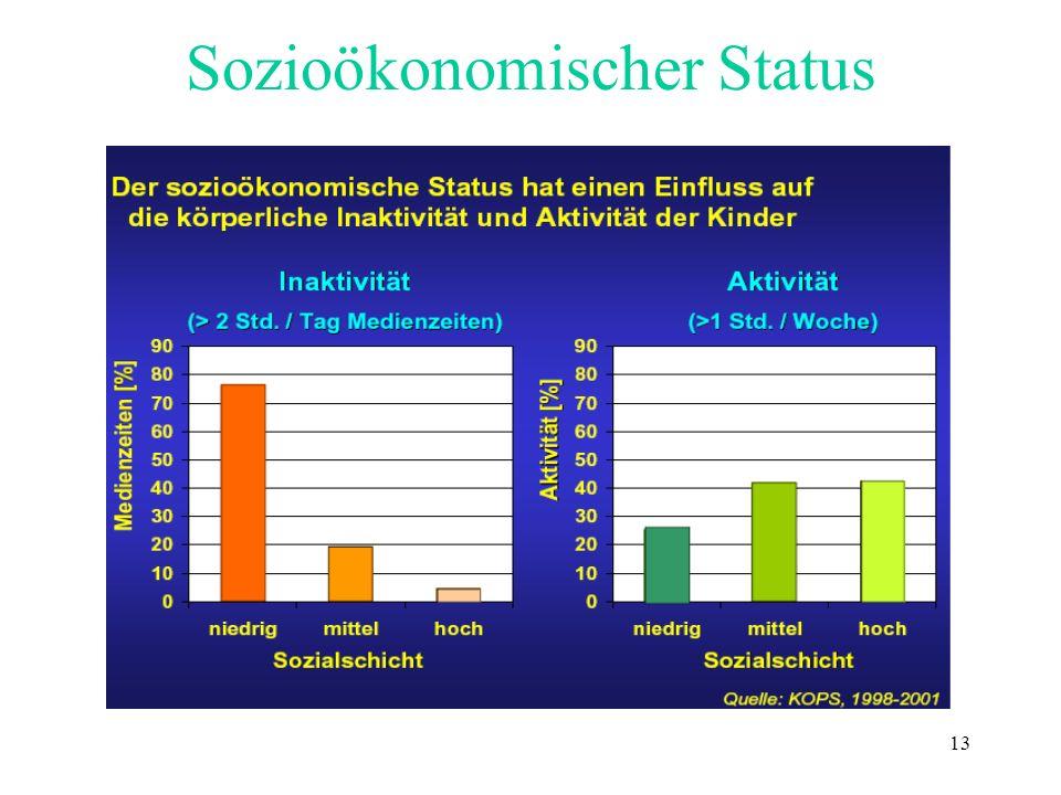 13 Sozioökonomischer Status