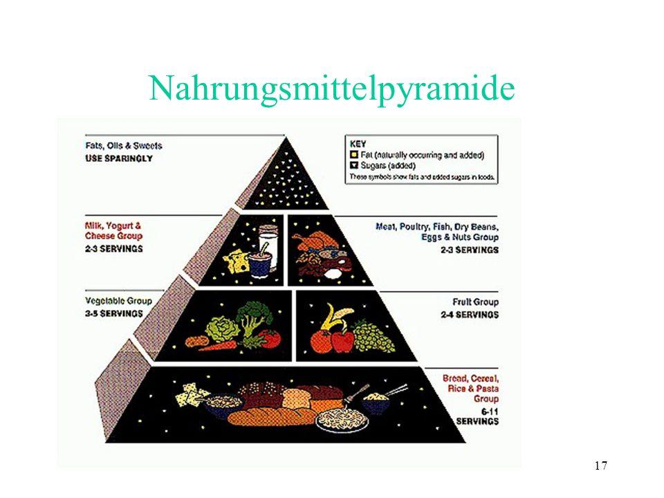 17 Nahrungsmittelpyramide