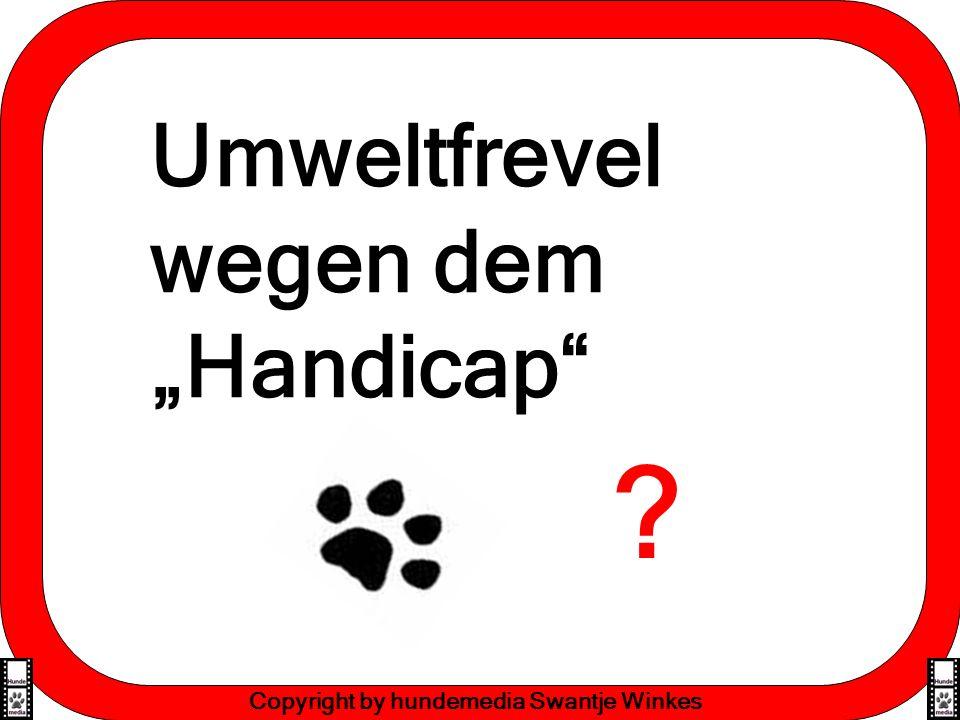 Effektive Lernmethoden Copyright by hundemedia Swantje Winkes Strafgelder für knapp 10 Millionen verantwortungsbewusste, naturverbundene und intelligente Menschen ?