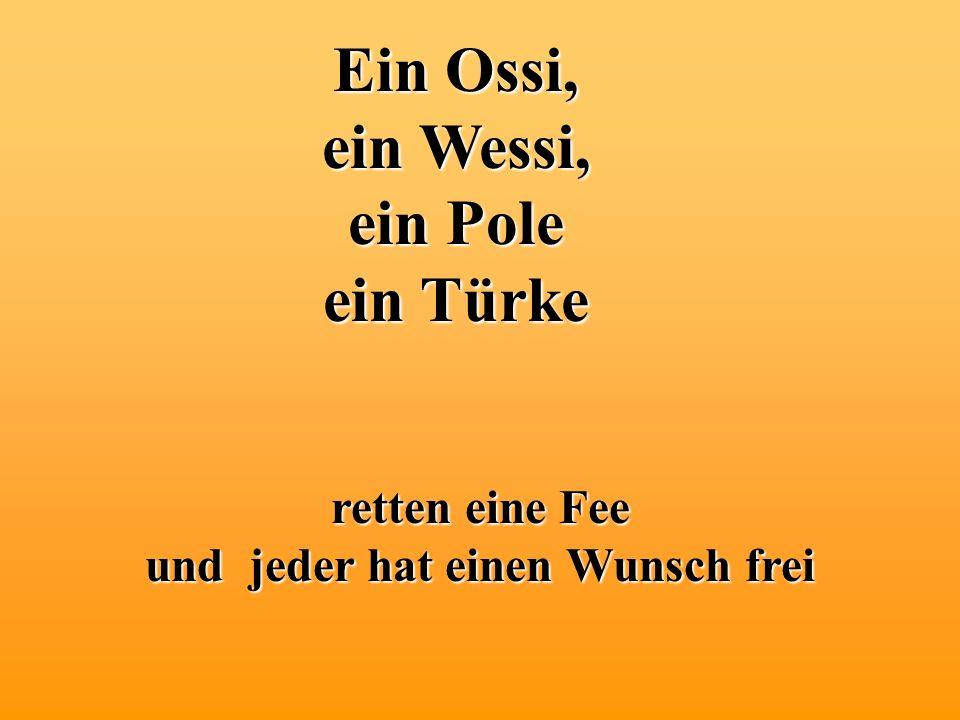 Ein Ossi, ein Wessi, ein Pole ein Türke retten eine Fee und jeder hat einen Wunsch frei