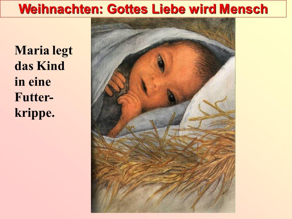 Weihnachten: Gottes Liebe wird Mensch Maria legt das Kind in eine Futter- krippe.