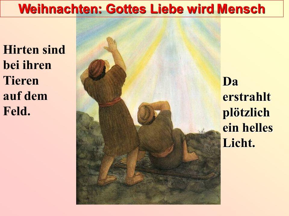Weihnachten: Gottes Liebe wird Mensch Hirten sind bei ihren Tieren auf dem Feld. Da erstrahlt plötzlich ein helles Licht.