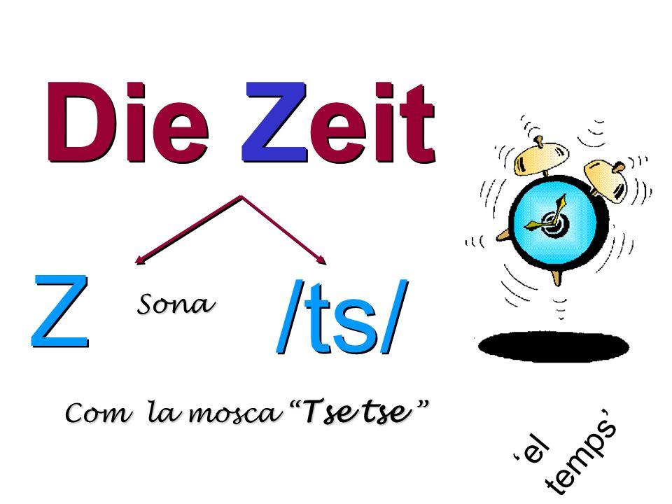 ʃ [ s + consonant] = [ ʃ ] Sport Busch Schule Spanien