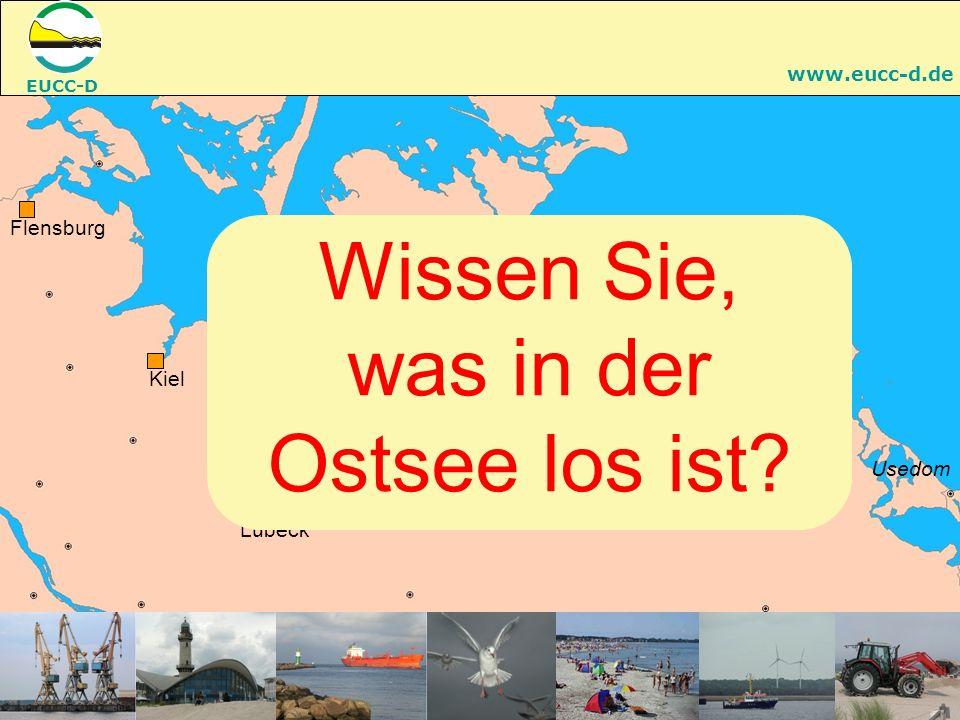 EUCC-D www.eucc-d.de RostockGreifswald Lübeck Kiel Flensburg Fehmarn Rügen Usedom Darß Stralsund Wismar Wissen Sie, was in der Ostsee los ist?